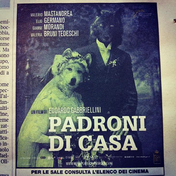 Grande nuovo cinema italiano cresce #padronidicasa