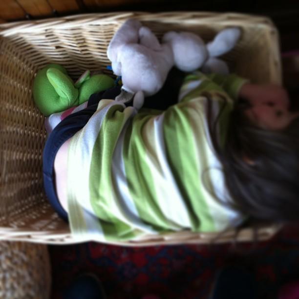 Bambina in una cesta